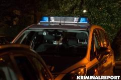 Zwei Flüchtige konnten gestellt werden.|Foto: DLB